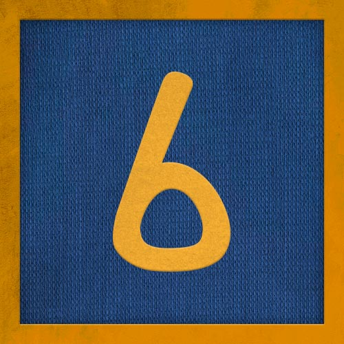 Dorsal numero 6