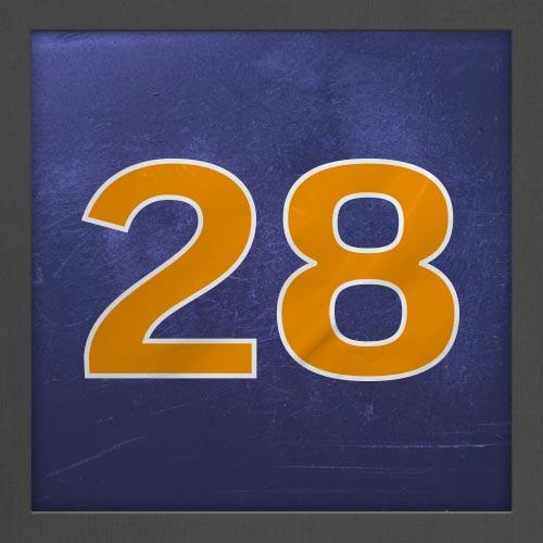 Dorsal numero 28